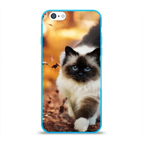 Чехол для iPhone 6/6S глянцевый Котик в листьях Фото 01