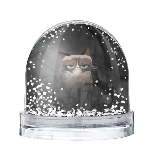 Водяной шар со снегом Grumpy Cat