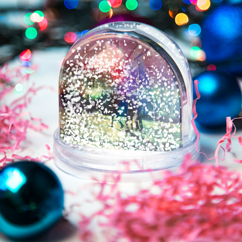 Водяной шар со снегом  Фото 04, Placebo
