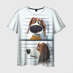 Разыскивается пёс