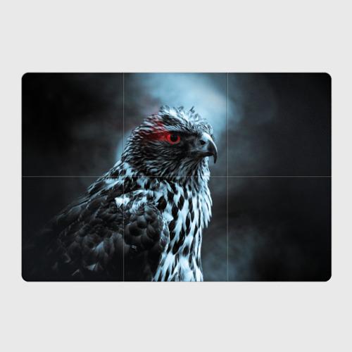 Магнитный плакат 3Х2  Фото 01, Ночной орёл