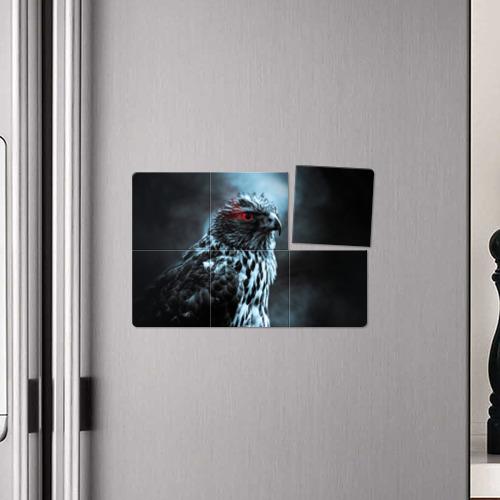 Магнитный плакат 3Х2  Фото 04, Ночной орёл