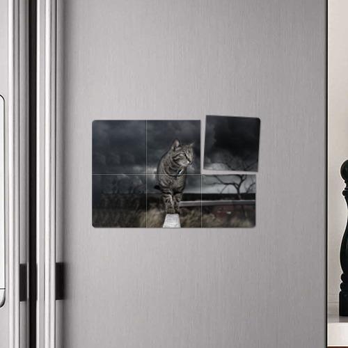 Магнитный плакат 3Х2  Фото 04, Кот