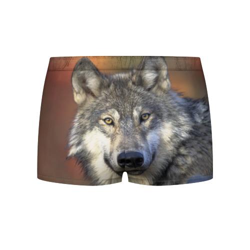 Мужские трусы 3D Волк Фото 01