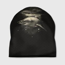 Cosmic Shark