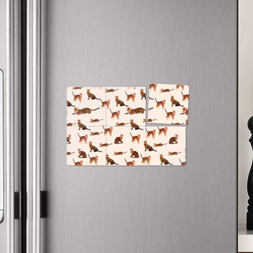 Магнитный плакат 3Х2  Фото 04, Котейки дольче 2