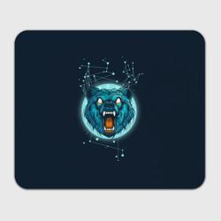 Космический медведь