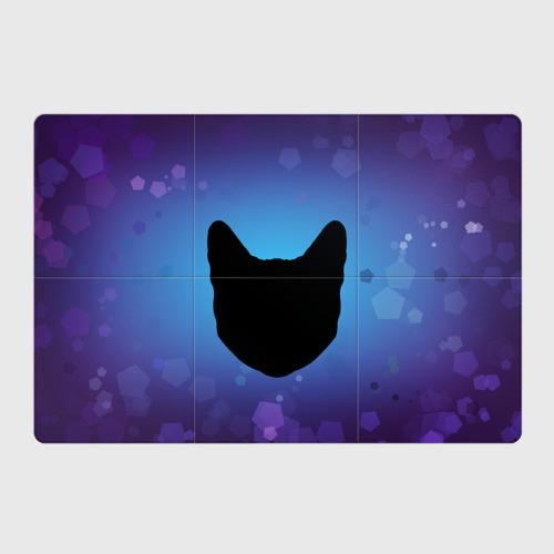 Магнитный плакат 3Х2  Фото 01, Силуэт черной кошки
