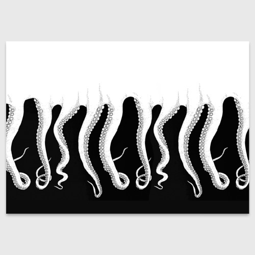 Поздравительная открытка Octopus Фото 01