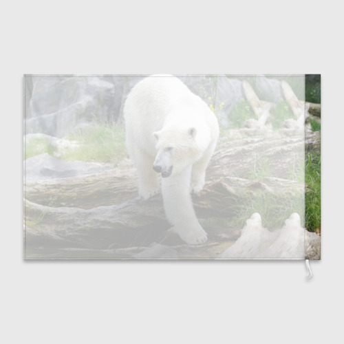 Флаг 3D  Фото 02, Белый медведь
