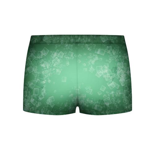 Мужские трусы 3D  Фото 02, Лев на зеленом фоне