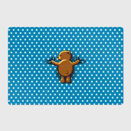 Магнитный плакат 3Х2  Фото 01, Медвежьи объятия