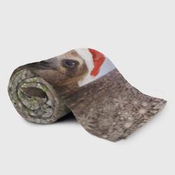 Рождественский ленивец