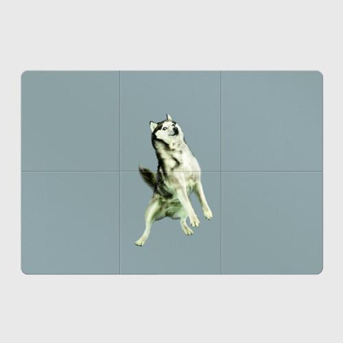 Магнитный плакат 3Х2  Фото 01, Doge