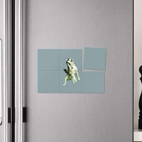 Магнитный плакат 3Х2  Фото 04, Doge