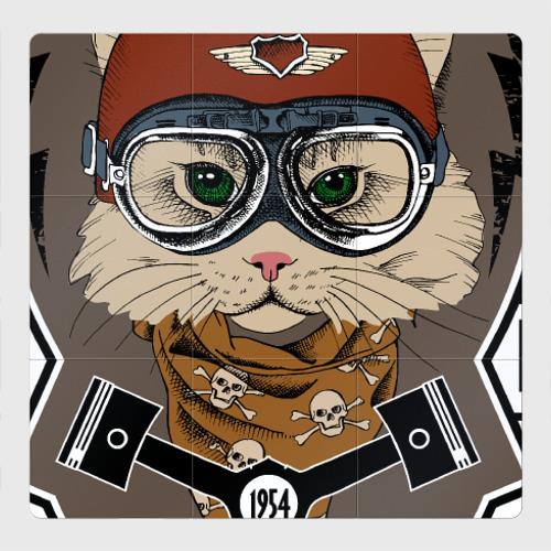 Магнитный плакат 3Х3 Кот-гонщик