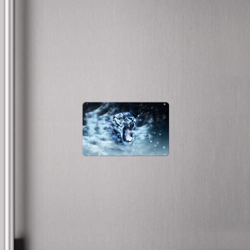 Магнит виниловый Visa  Фото 04, Белый тигр