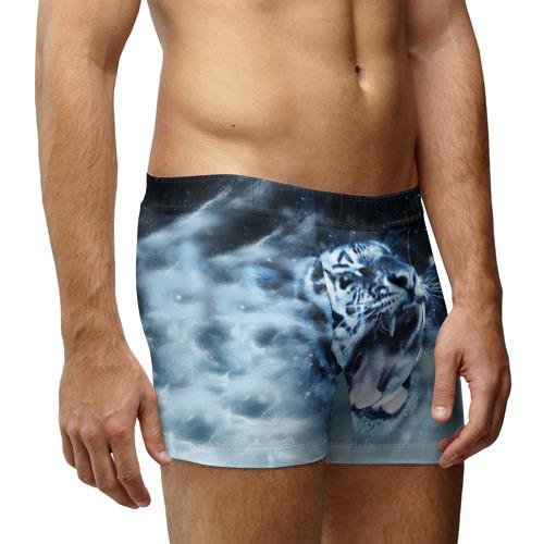 Мужские трусы 3D  Фото 03, Белый тигр