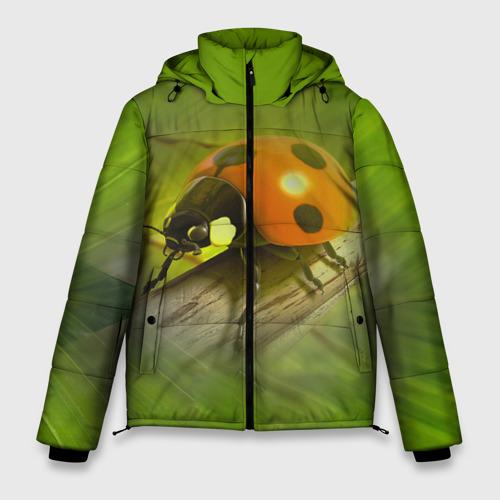 Мужская зимняя куртка 3D Божья коровка Фото 01