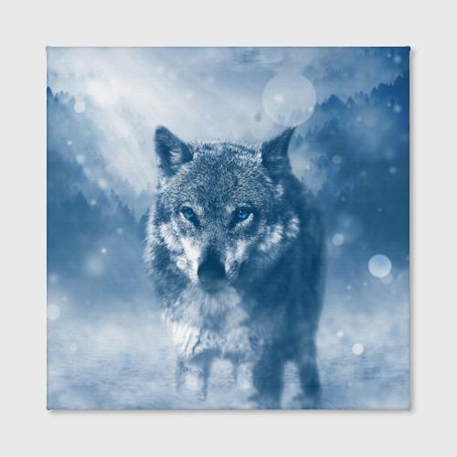 Холст квадратный Волк Фото 01