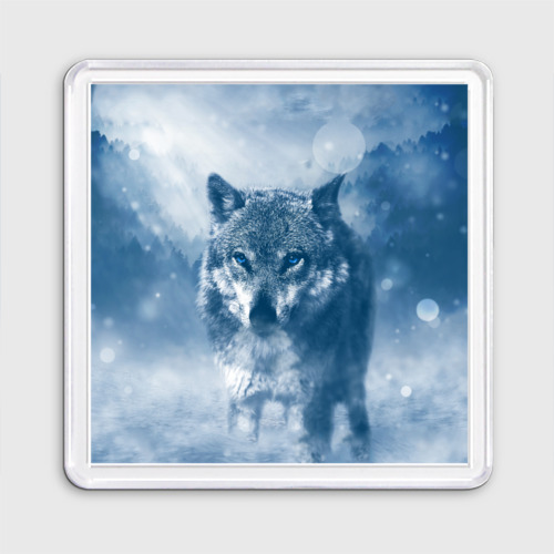 Магнит 55*55 Волк Фото 01