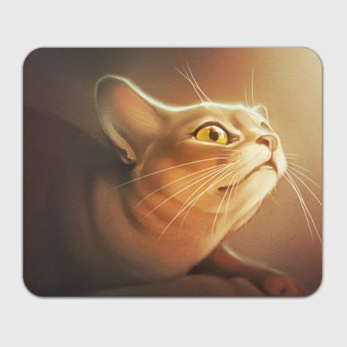 Коврик прямоугольный  Фото 01, Кот