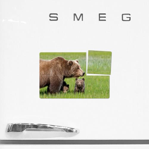 Магнитный плакат 3Х2  Фото 02, Медведи
