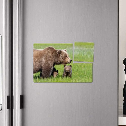 Магнитный плакат 3Х2  Фото 04, Медведи