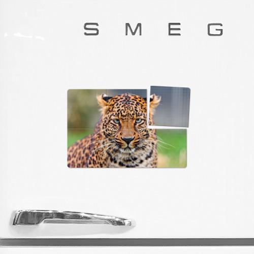 Магнитный плакат 3Х2  Фото 02, Леопард