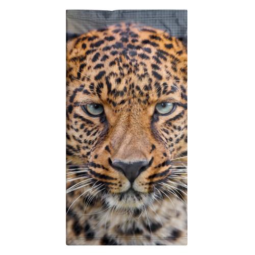 Бандана-труба 3D  Фото 07, Леопард