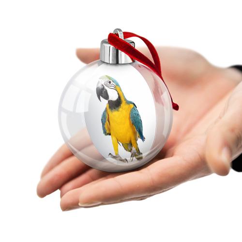 Ёлочный шар  Фото 02, Попугай ара