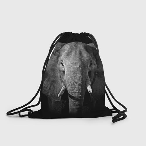 Рюкзак-мешок 3D  Фото 01, Слон