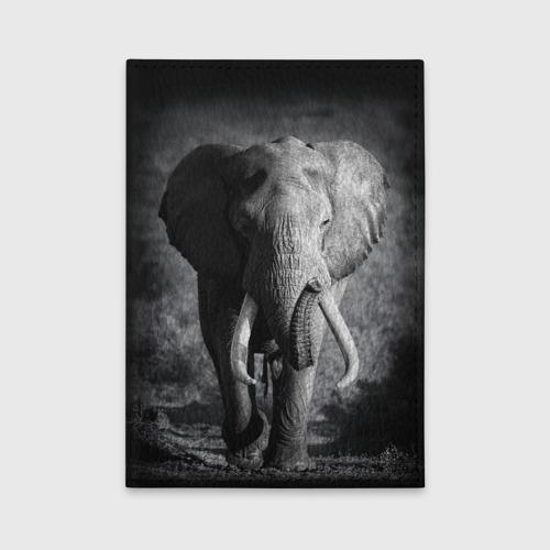 Обложка для автодокументов  Фото 01, Слон