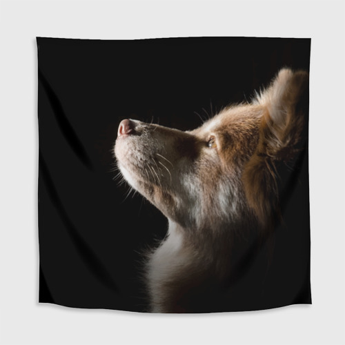 Скатерть 3D  Фото 02, Собака