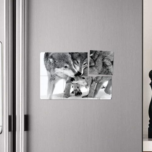 Магнитный плакат 3Х2  Фото 04, Волчья семья