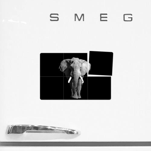 Магнитный плакат 3Х2  Фото 02, Слон