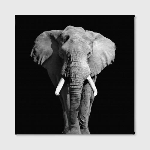 Холст квадратный  Фото 02, Слон