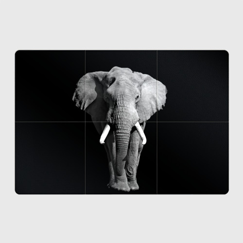 Магнитный плакат 3Х2  Фото 01, Слон