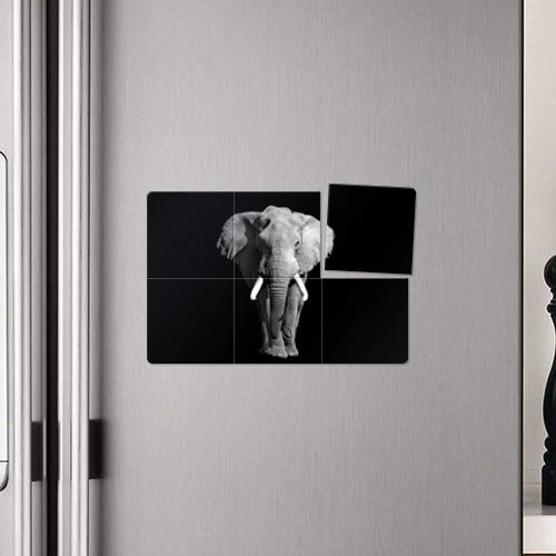 Магнитный плакат 3Х2  Фото 04, Слон