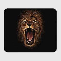 Львиный рык