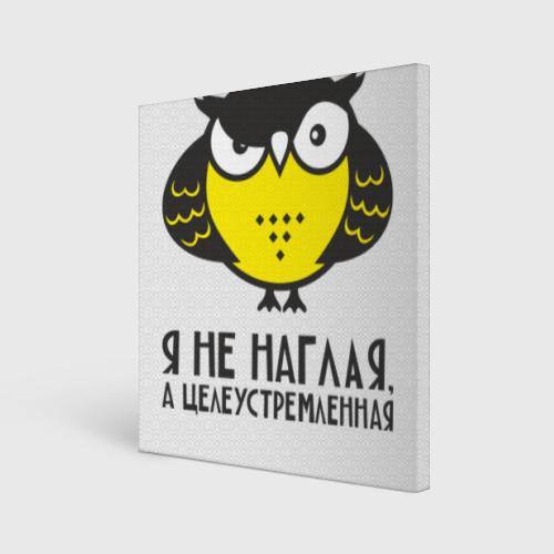 Owl. Сова. Я не наглая.