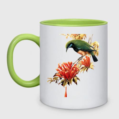 Кружка двухцветная экзотическая птица Фото 01