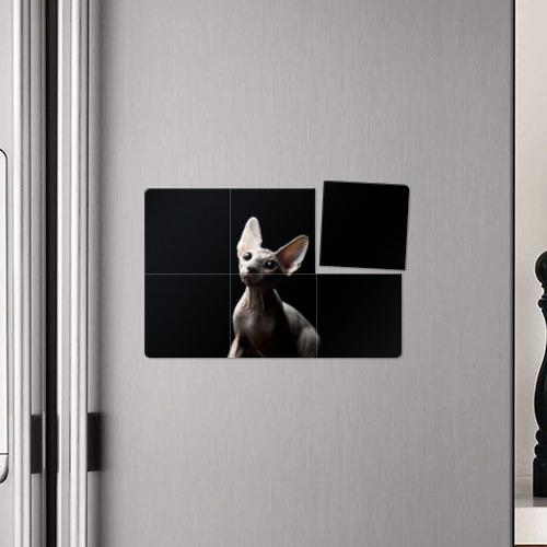 Магнитный плакат 3Х2  Фото 04, Сфинкс