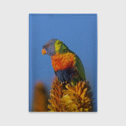 Обложка для автодокументов  Фото 01, Попугай