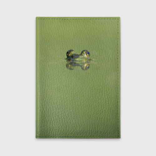 Лягушка
