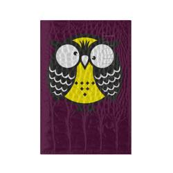 Сумашедшая сова