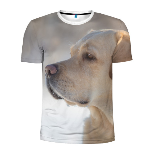 Мужская футболка 3D спортивная  Фото 01, Лабрадор