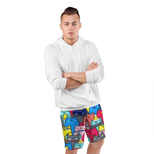 Мужские шорты 3D спортивные  Фото 05, Котики