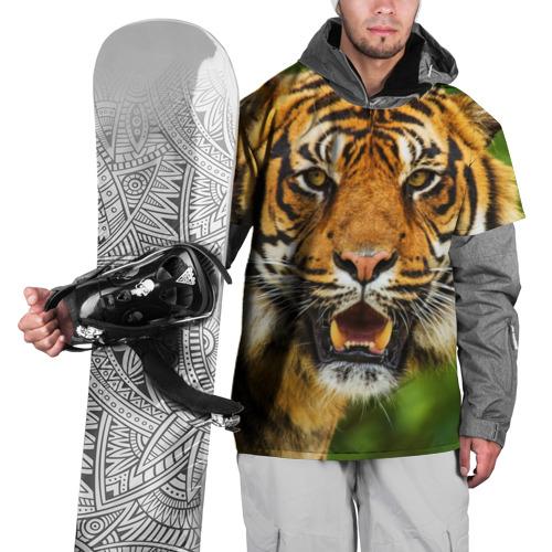Накидка на куртку 3D Тигр Фото 01
