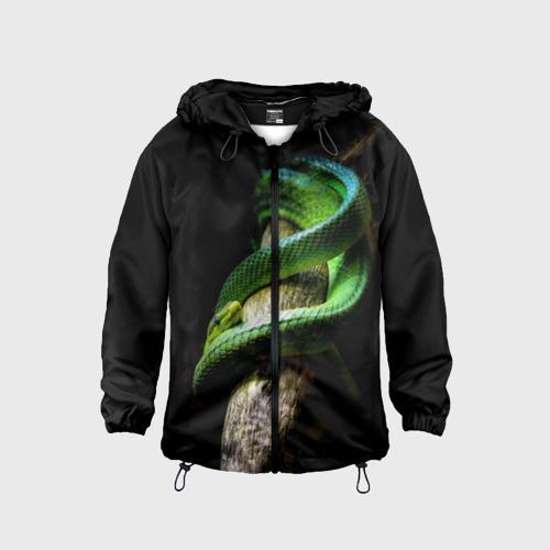 Детская ветровка 3D  Фото 01, Змея на груди